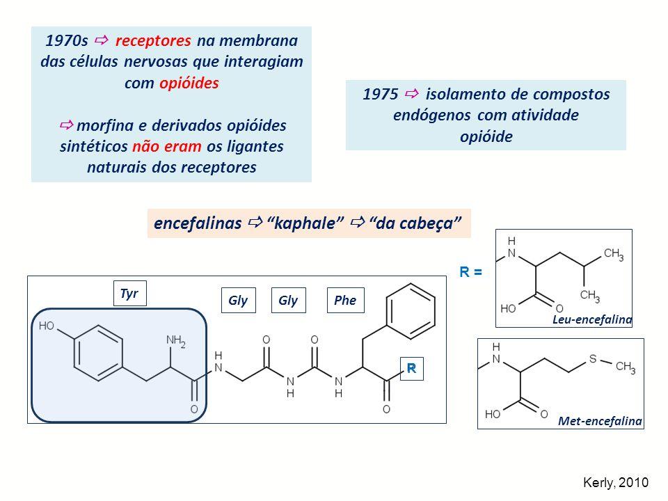 1975  isolamento de compostos endógenos com atividade