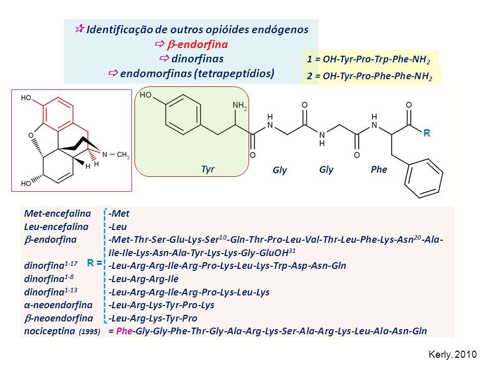  Identificação de outros opióides endógenos  -endorfina