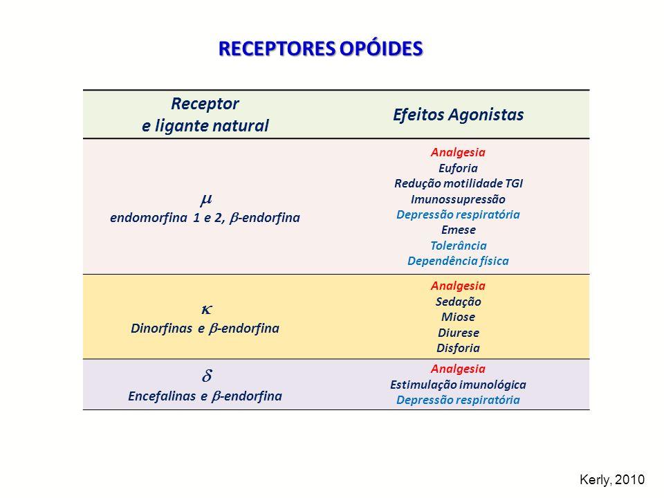 RECEPTORES OPÓIDES Receptor Efeitos Agonistas e ligante natural   