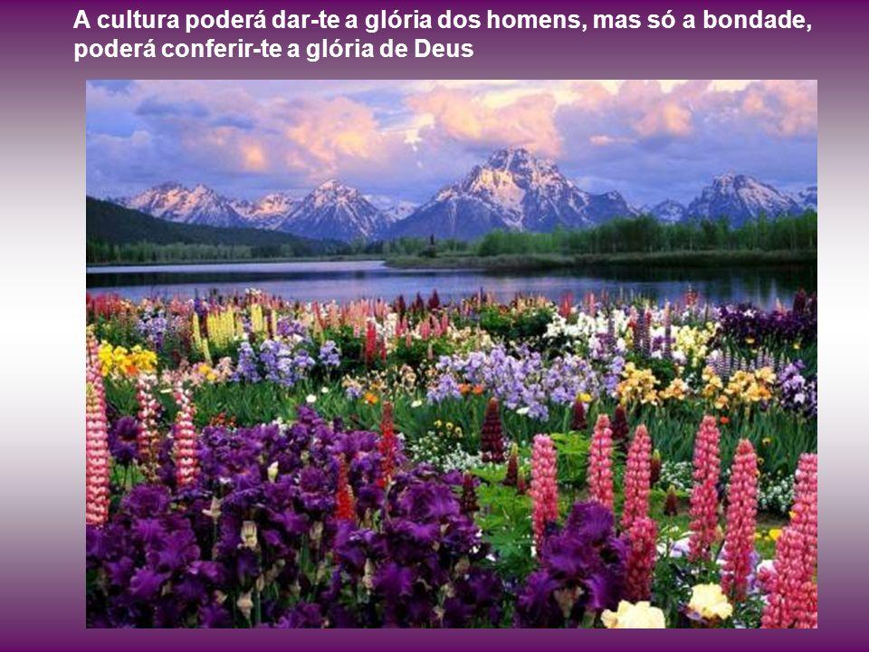A cultura poderá dar-te a glória dos homens, mas só a bondade, poderá conferir-te a glória de Deus