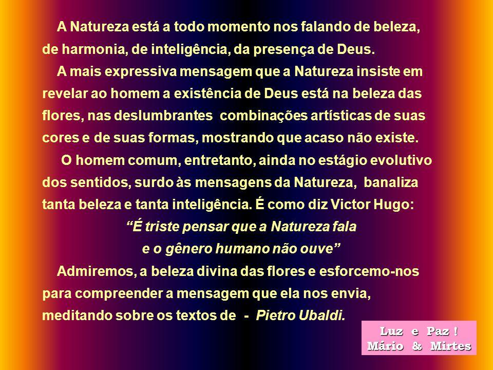 É triste pensar que a Natureza fala e o gênero humano não ouve