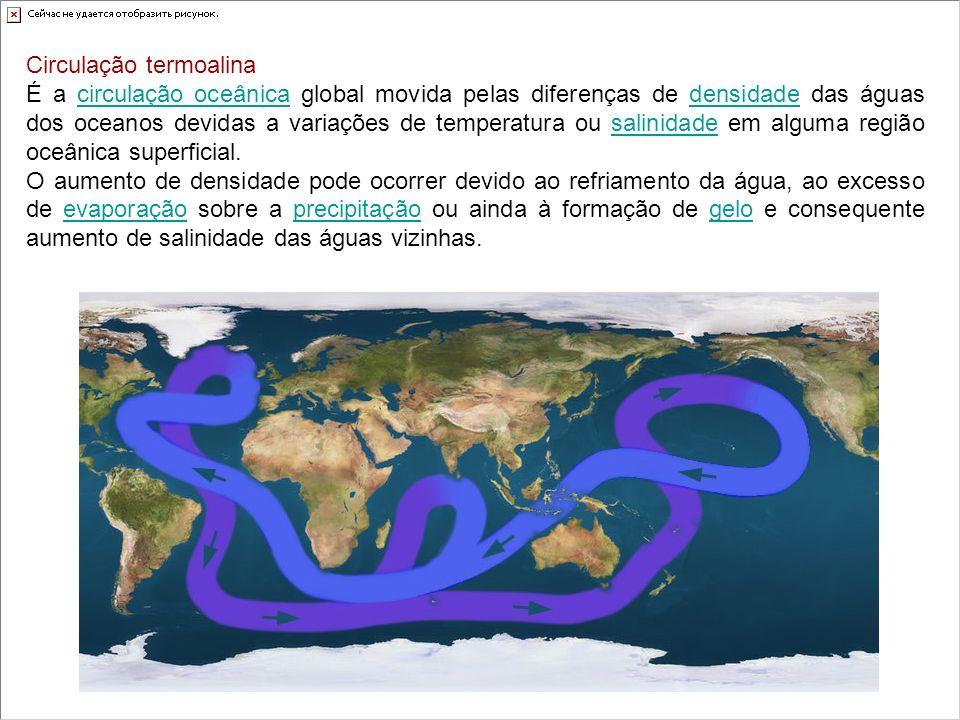 Circulação termoalina