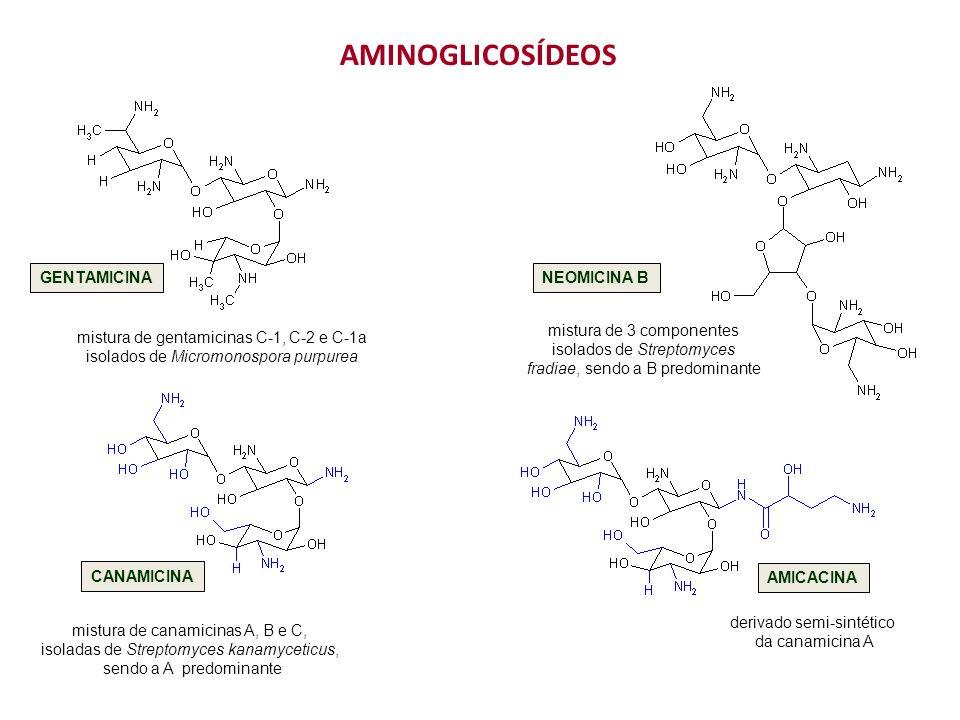 derivado semi-sintético da canamicina A