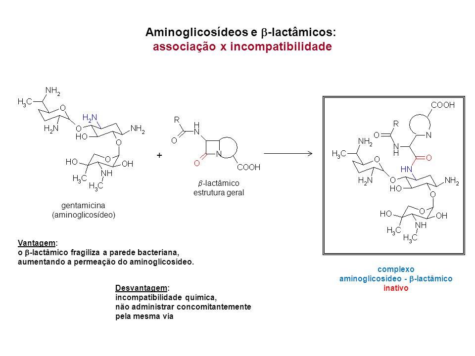 Aminoglicosídeos e b-lactâmicos: associação x incompatibilidade