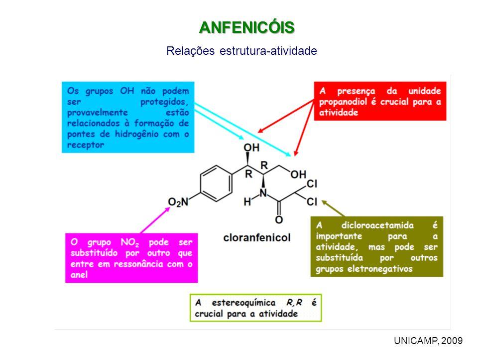 ANFENICÓIS Relações estrutura-atividade UNICAMP, 2009