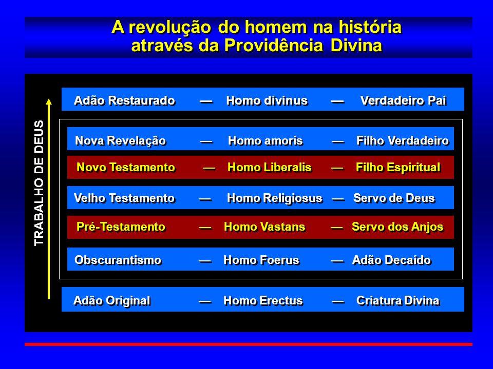 A revolução do homem na história através da Providência Divina
