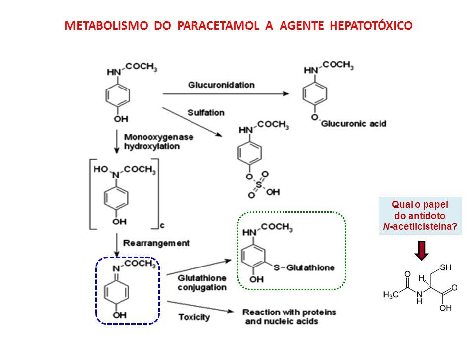 METABOLISMO DO PARACETAMOL A AGENTE HEPATOTÓXICO