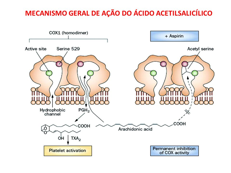 MECANISMO GERAL DE AÇÃO DO ÁCIDO ACETILSALICÍLICO