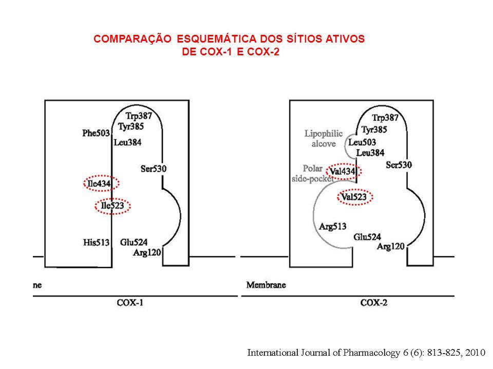 COMPARAÇÃO ESQUEMÁTICA DOS SÍTIOS ATIVOS