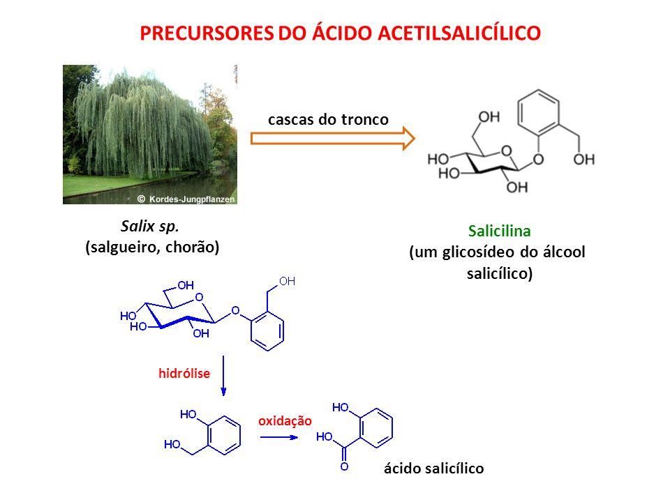 (um glicosídeo do álcool