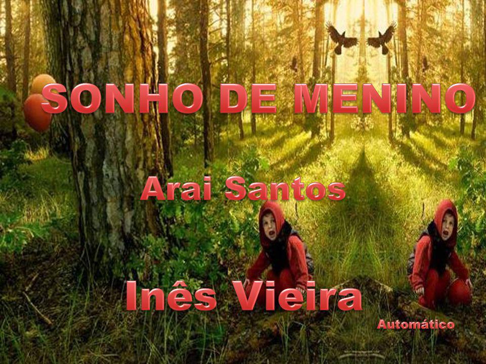 SONHO DE MENINO Inês Vieira
