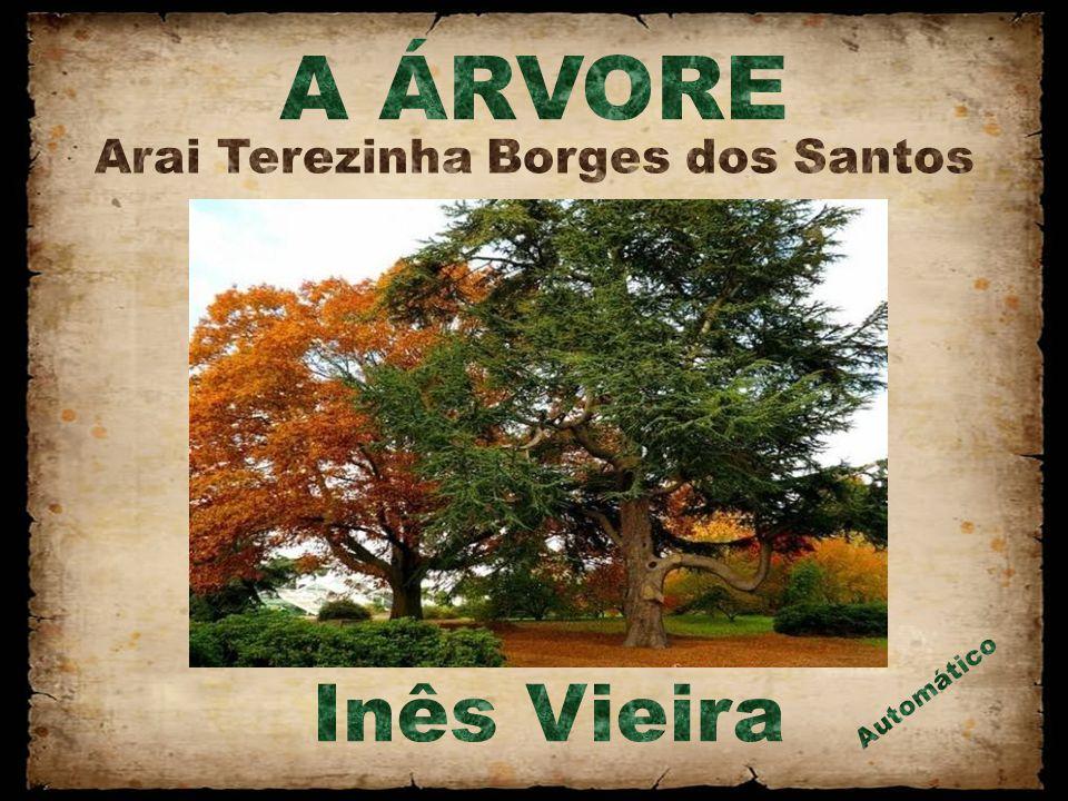 Arai Terezinha Borges dos Santos