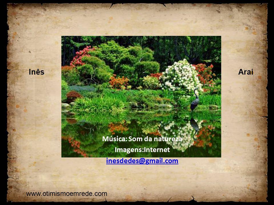 Música: Som da natureza Imagens:Internet inesdedes@gmail.com