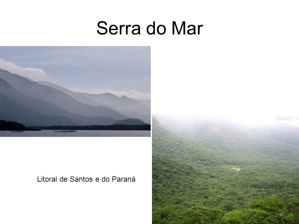 Serra do Mar Litoral de Santos e do Paraná