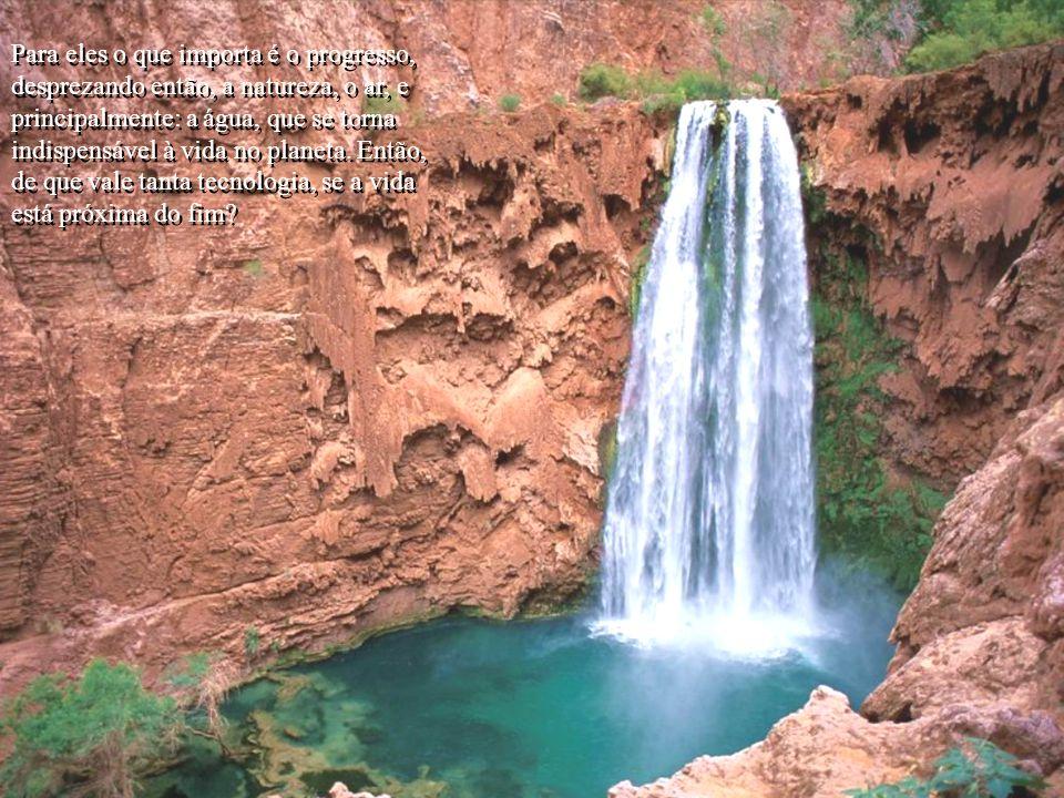 Para eles o que importa é o progresso, desprezando então, a natureza, o ar, e principalmente: a água, que se torna indispensável à vida no planeta.