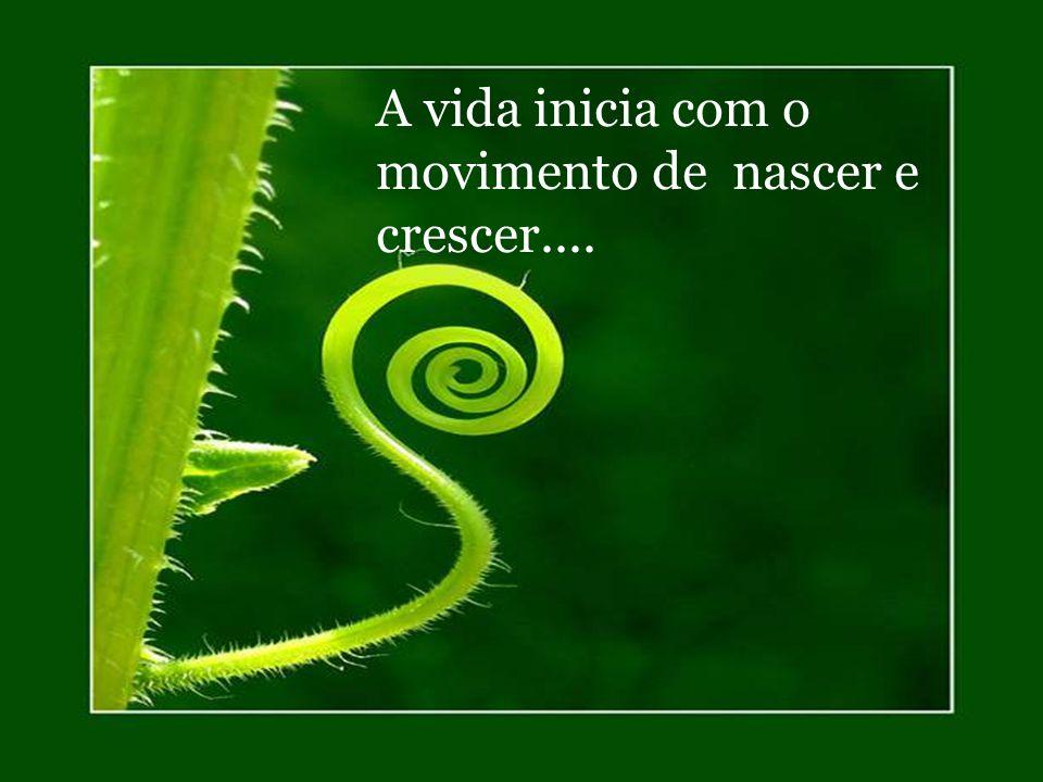 A vida inicia com o movimento de nascer e crescer....