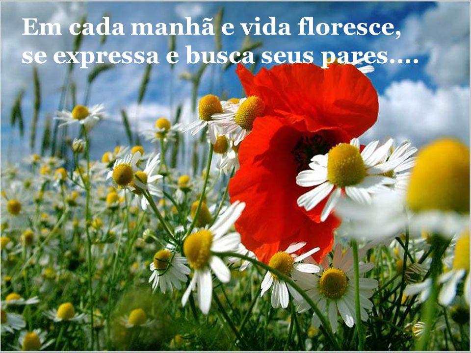 Em cada manhã e vida floresce, se expressa e busca seus pares....