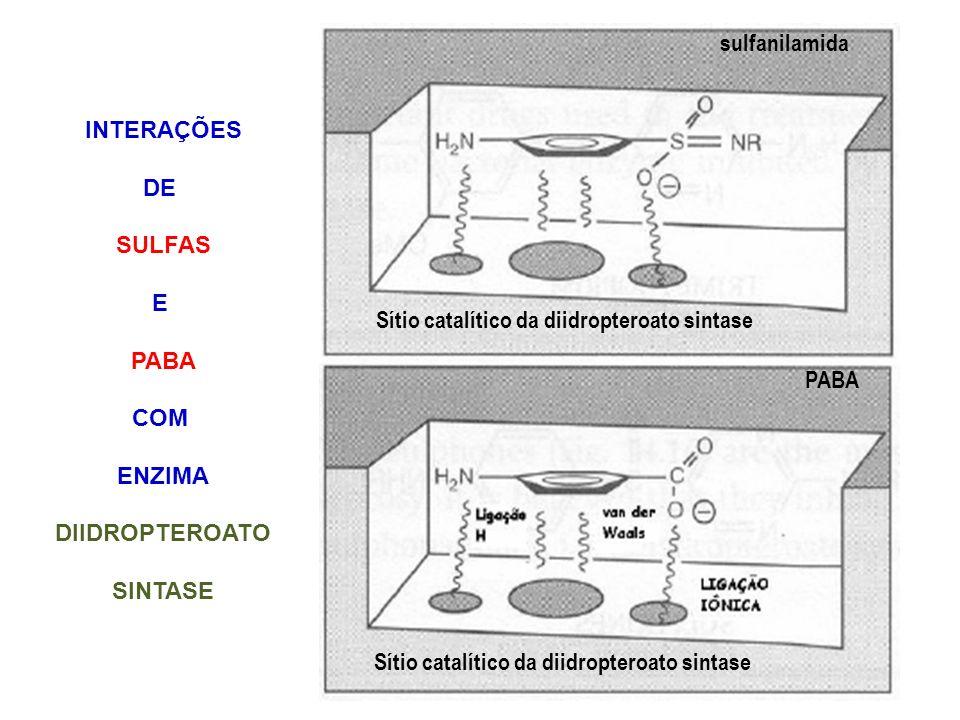 Sítio catalítico da diidropteroato sintase