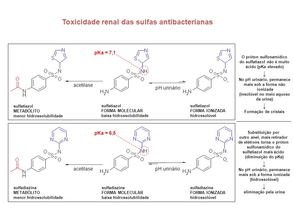 Toxicidade renal das sulfas antibacterianas