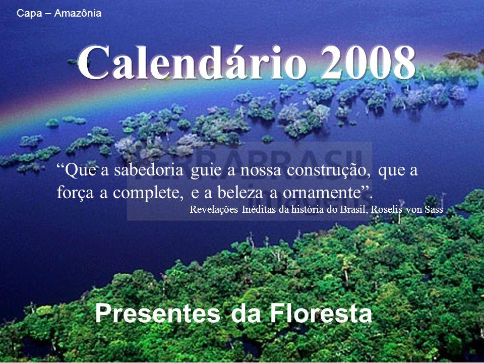 Calendário 2008 Presentes da Floresta