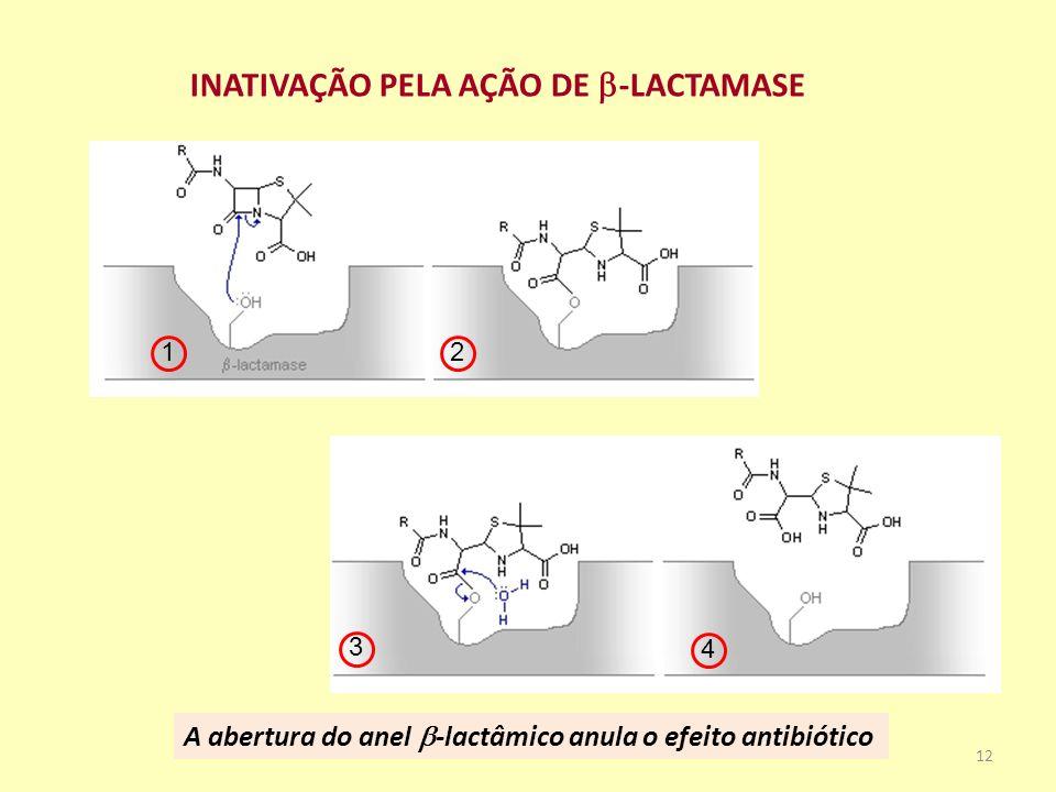 INATIVAÇÃO PELA AÇÃO DE -LACTAMASE