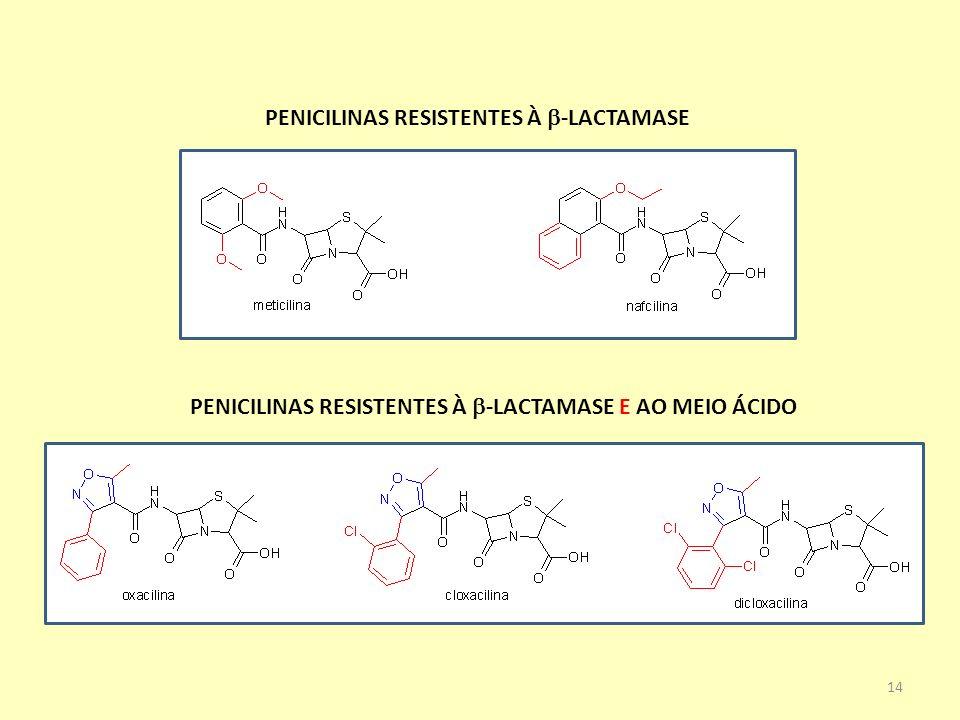 PENICILINAS RESISTENTES À b-LACTAMASE