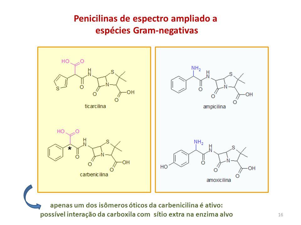 Penicilinas de espectro ampliado a espécies Gram-negativas