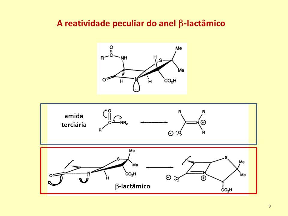 A reatividade peculiar do anel b-lactâmico