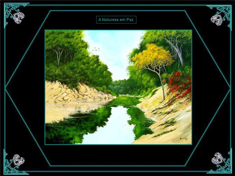A Natureza em Paz