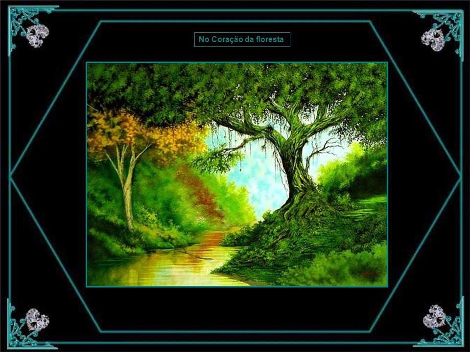No Coração da floresta