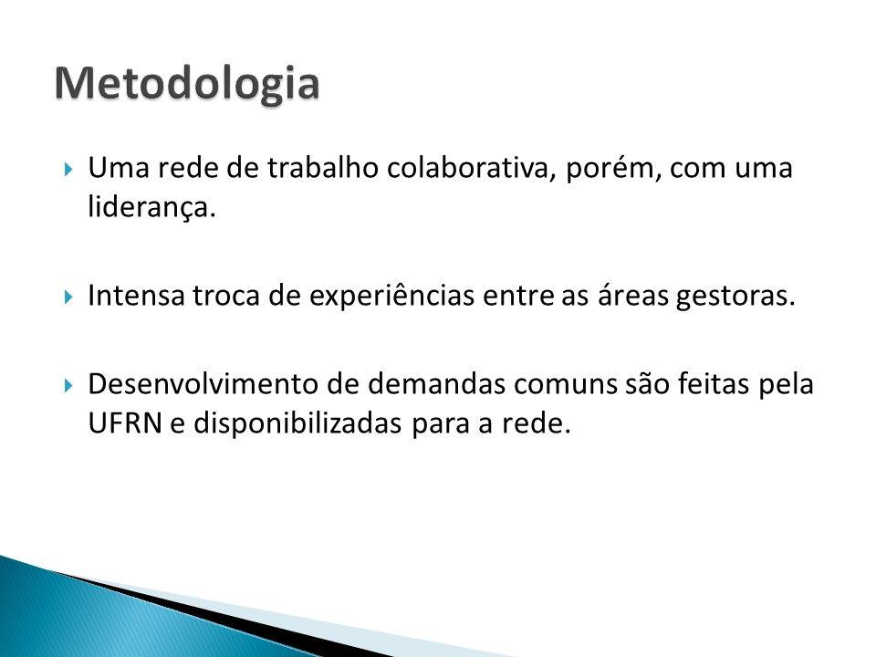 Metodologia Uma rede de trabalho colaborativa, porém, com uma liderança. Intensa troca de experiências entre as áreas gestoras.