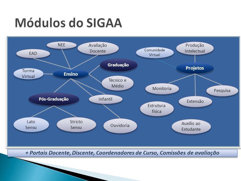 Módulos do SIGAA NEE. Avaliação Docente. Produção Intelectual. Comunidade Virtual. EAD. Graduação.