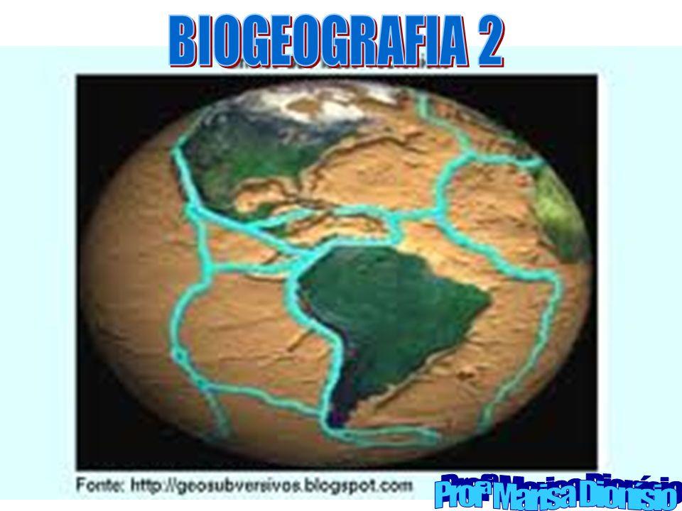 BIOGEOGRAFIA 2 Profª Marisa Dionísio