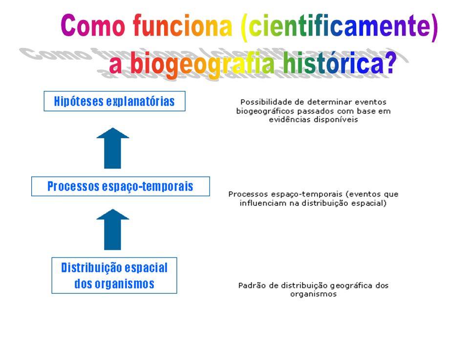 Como funciona (cientificamente) a biogeografia histórica