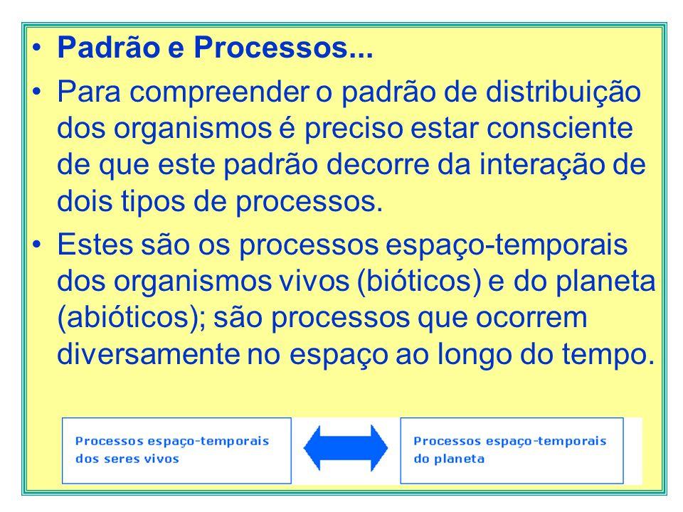 Padrão e Processos...