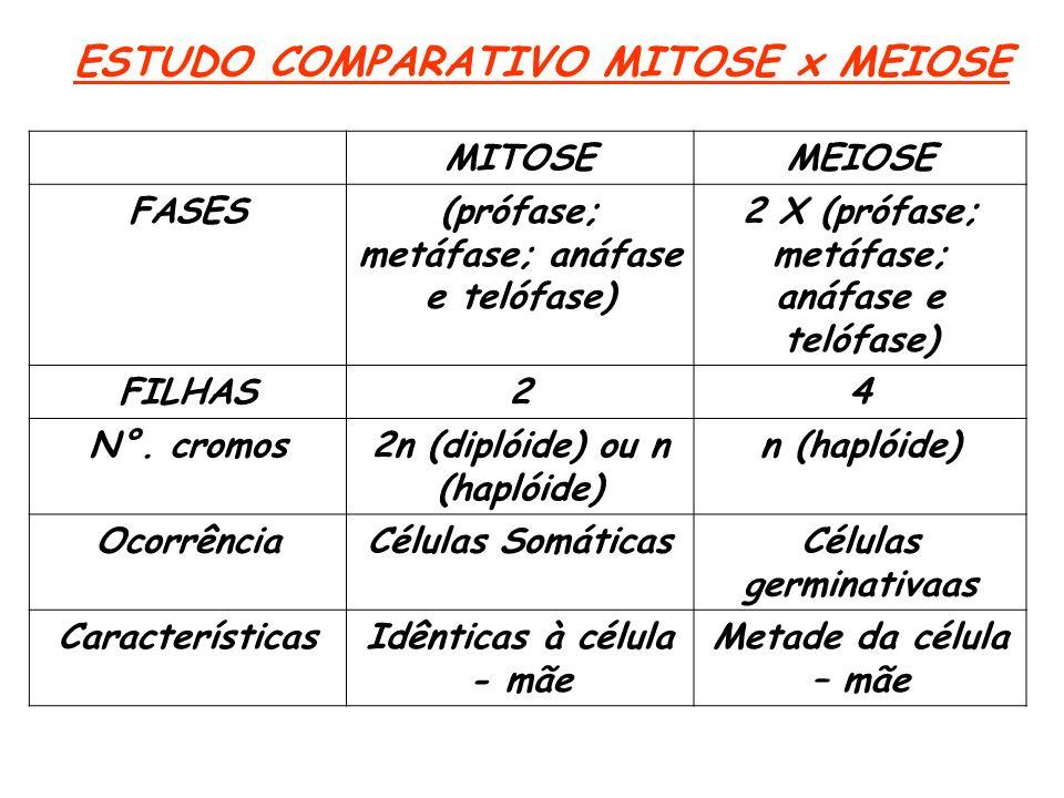ESTUDO COMPARATIVO MITOSE x MEIOSE