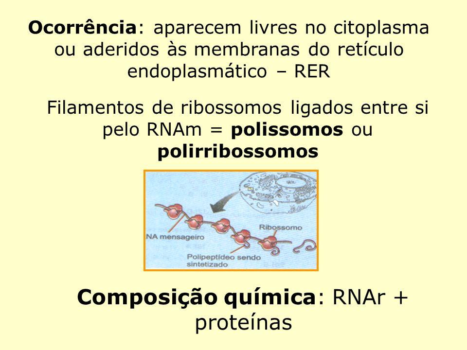 Composição química: RNAr + proteínas