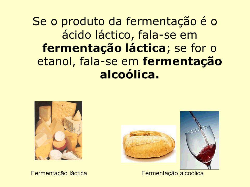 Se o produto da fermentação é o ácido láctico, fala-se em fermentação láctica; se for o etanol, fala-se em fermentação alcoólica.