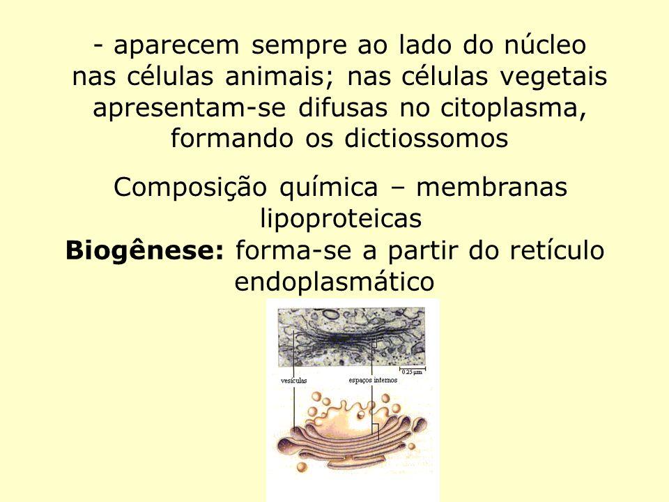 Composição química – membranas lipoproteicas