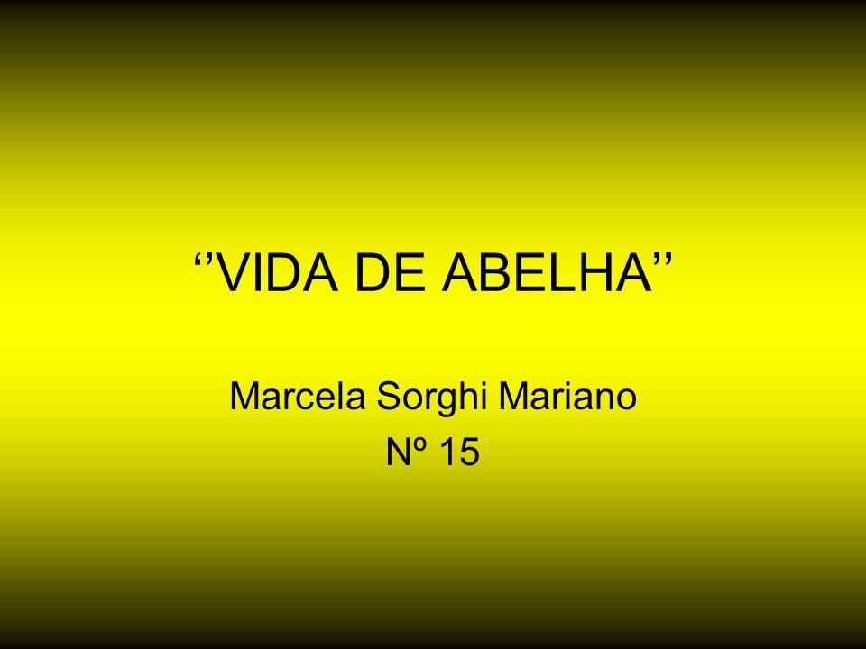 Marcela Sorghi Mariano Nº 15