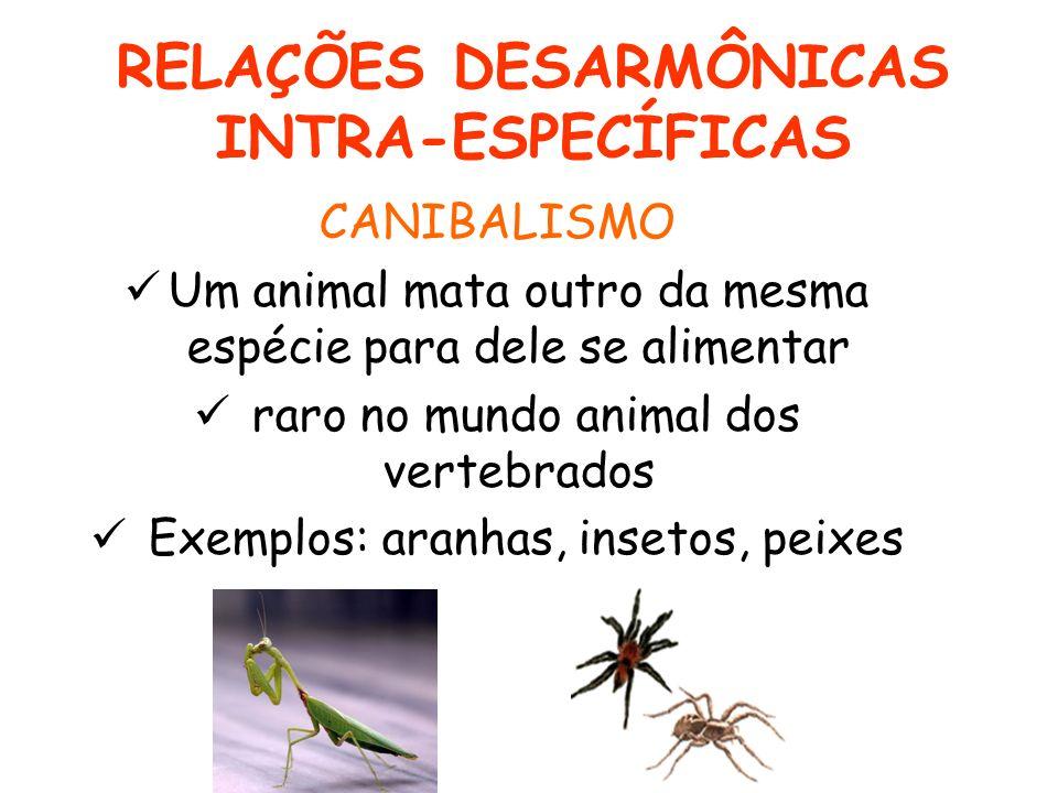 RELAÇÕES DESARMÔNICAS INTRA-ESPECÍFICAS