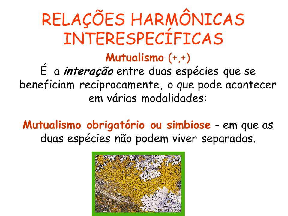 RELAÇÕES HARMÔNICAS INTERESPECÍFICAS Mutualismo (+,+)