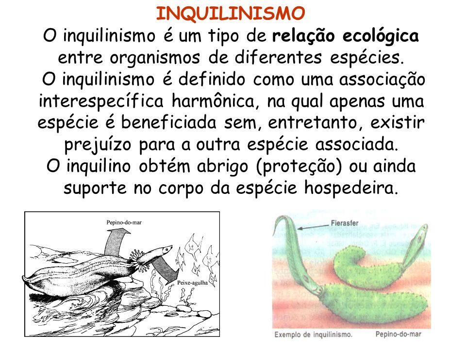 INQUILINISMO O inquilinismo é um tipo de relação ecológica entre organismos de diferentes espécies.