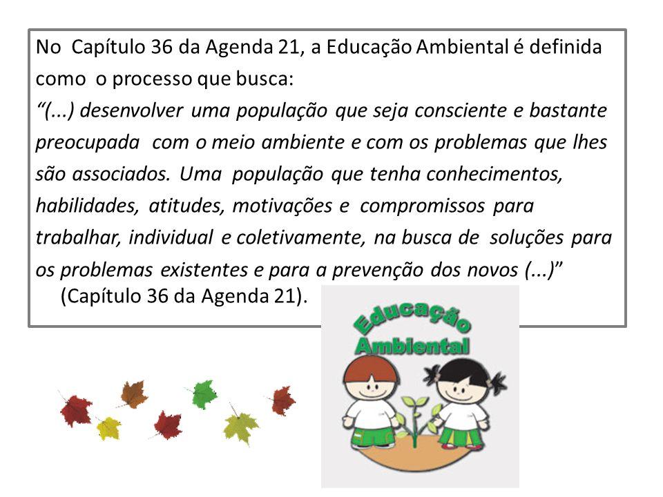 No Capítulo 36 da Agenda 21, a Educação Ambiental é definida como o processo que busca: (...) desenvolver uma população que seja consciente e bastante preocupada com o meio ambiente e com os problemas que lhes são associados.