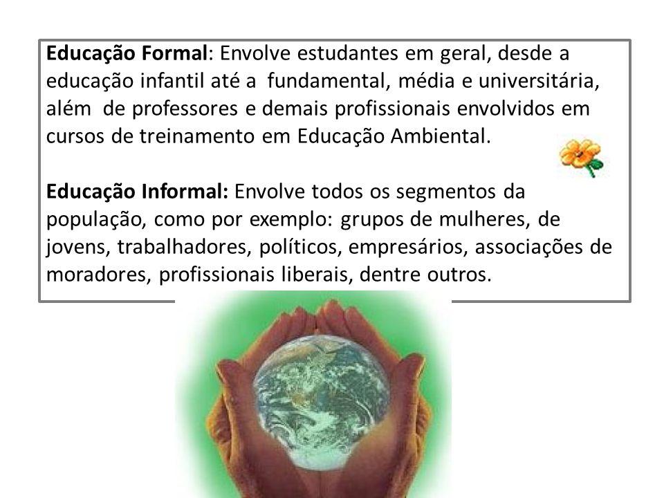 Educação Formal: Envolve estudantes em geral, desde a educação infantil até a fundamental, média e universitária, além de professores e demais profissionais envolvidos em cursos de treinamento em Educação Ambiental.