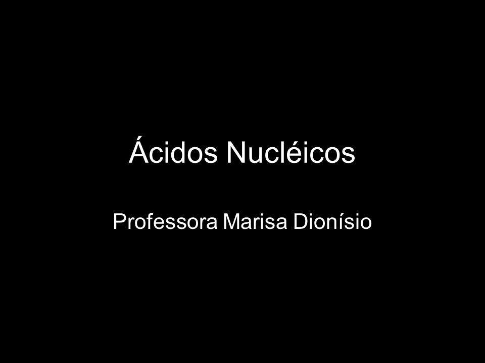 Professora Marisa Dionísio