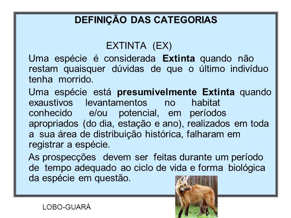 DEFINIÇÃO DAS CATEGORIAS
