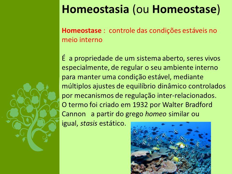 Homeostasia (ou Homeostase)
