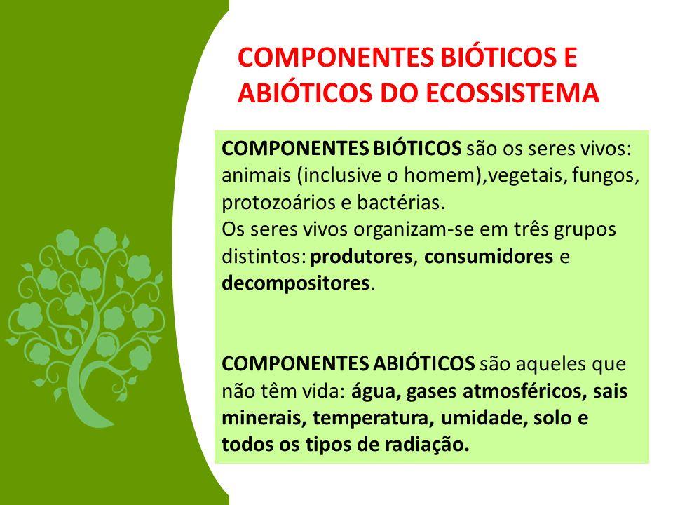 COMPONENTES BIÓTICOS E ABIÓTICOS DO ECOSSISTEMA