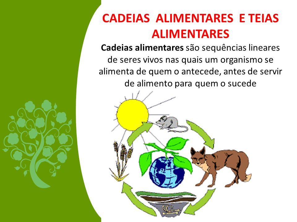 CADEIAS ALIMENTARES E TEIAS ALIMENTARES